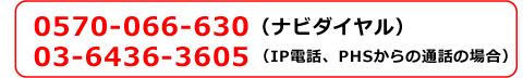 0570-066-630(ナビダイヤル) 03-6436-3605(IP電話・PHS話からの通話の場合)